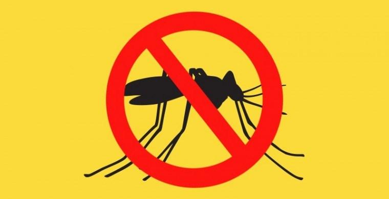 Nota Técnica Conjunta sobre Vacinação para a Febre Amarela